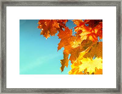 The Lord Of Autumnal Change Framed Print