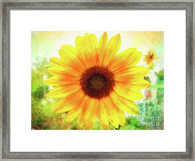 Bright Yellow Sunflower - Painted Summer Sunshine Framed Print