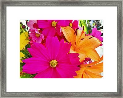 Brighten My Day Framed Print