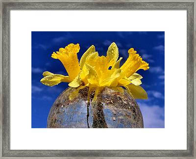 Brighten Your Day Framed Print by Karen M Scovill