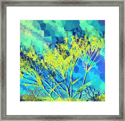 Brighter Day Framed Print by Shawna Rowe