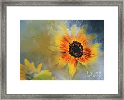 Brighter Than Sunshine Framed Print by Eva Lechner