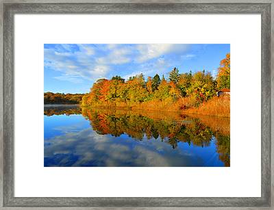 Brilliance Of Autumn Framed Print