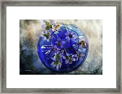 Brilliant Blue Framed Print by Randi Grace Nilsberg