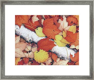 Brilliant Embers Framed Print by Amy S Turner