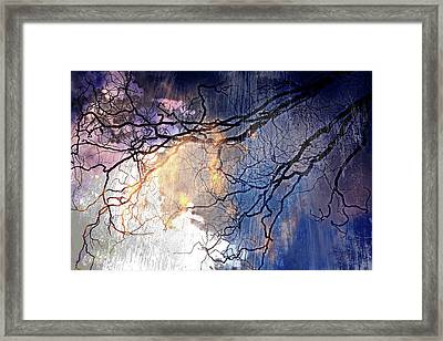 Brilliant Rain Framed Print by Gray  Artus