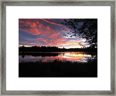 Brilliant Sunset Framed By Tree Framed Print