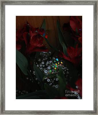 Framed Print featuring the photograph Brilliantly Shy by Marie Neder