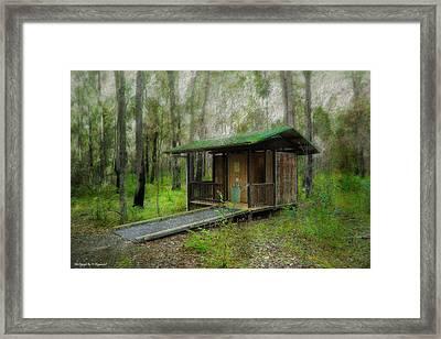 Brimbin Nature Reserve 01 Framed Print