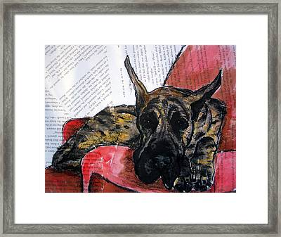 Brindle Great Dane On Couch Framed Print by Christas Designs
