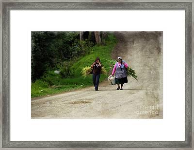 Bringing In The Sheaves IIi Framed Print by Al Bourassa