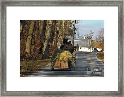 Brining Home The Hay Framed Print by Skip Willits