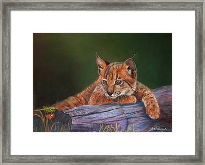 Framed Print featuring the painting Brisa by Ceci Watson