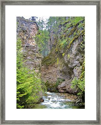 British Columbia Framed Print by Reb Frost
