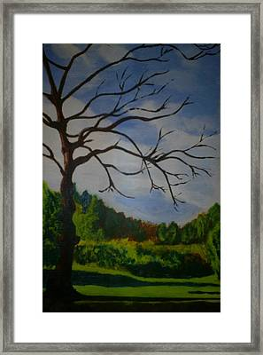 British Landscape Framed Print by James Dolan