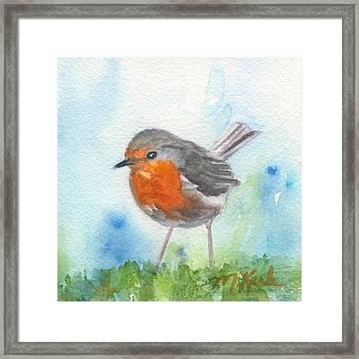 British Robin Framed Print