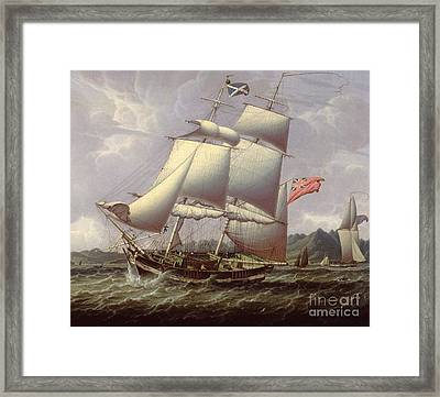British Schooners Framed Print
