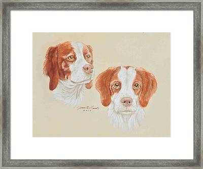 Brittanys Framed Print by Joan Williams