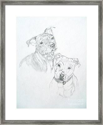 Brittney Framed Print by Nancy Rucker