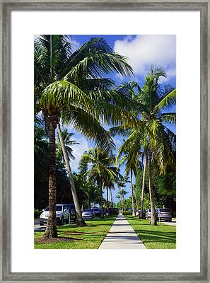 Broad Avenue South, Old Naples Framed Print