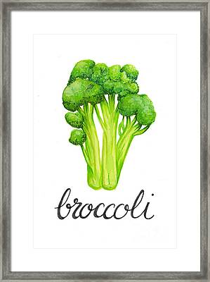 Broccoli Framed Print by Cindy Garber Iverson