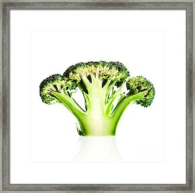 Broccoli Cutaway On White Framed Print by Johan Swanepoel