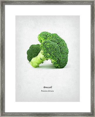 Broccoli Framed Print by Mark Rogan