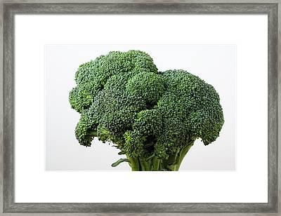 Broccoli Framed Print by Robert Ullmann