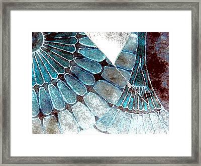 Broken 3-2 Framed Print by Lenore Senior