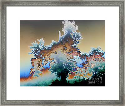 Framed Print featuring the photograph Broken Dream Tree  by Jesse Ciazza