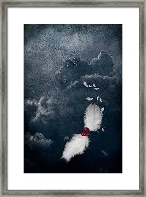 Broken Framed Print by Maggie Terlecki