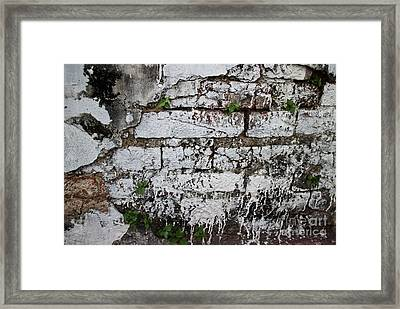 Broken Stucco Wall With Whitewashed Exposed Brick Texture And Ve Framed Print