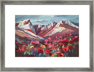 Broken Top Wildflowers Framed Print