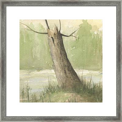 Broken Tree Framed Print