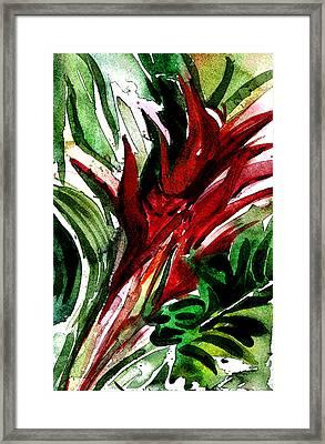 Bromelia Framed Print by Mindy Newman