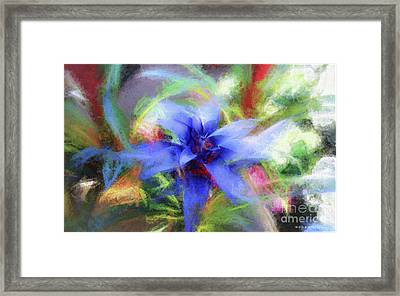 Bromeliad Exotic Tropical Plant Framed Print by Mona Stut