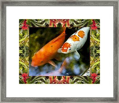 Bromeliad Koi Framed Print