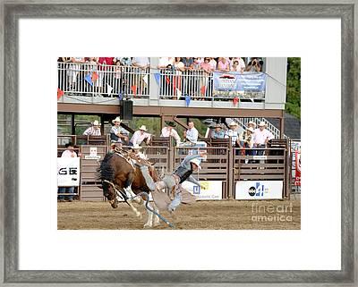 Bronc Riding Framed Print by Dennis Hammer