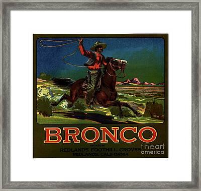 Bronco Redlands California Framed Print