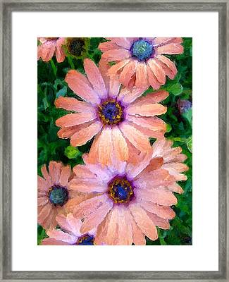 Framed Print featuring the photograph Bronze Beauty  by Heidi Smith