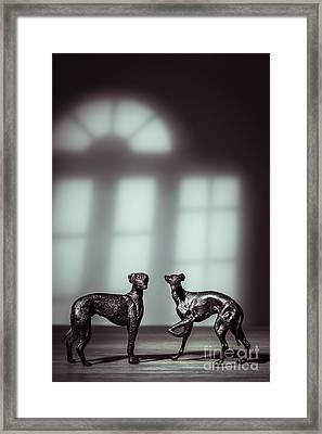 Bronze Greyhound Figures Framed Print by Amanda Elwell