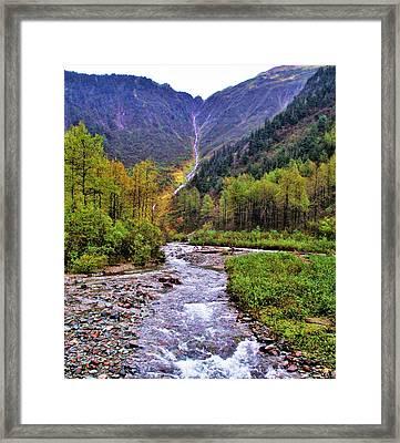 Brook Framed Print