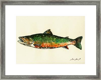Brook Trout Framed Print by Juan  Bosco