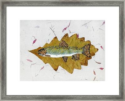 Brook Trout Framed Print