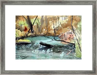 Brookfield Creek, Brisbane Australia Framed Print