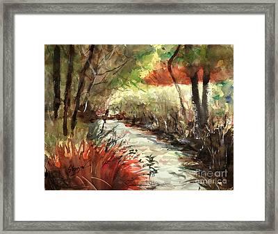 Brookfield Creek #2 Framed Print