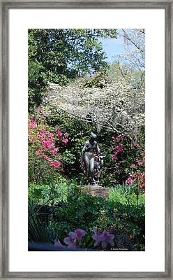 Brookgreen 3 Framed Print