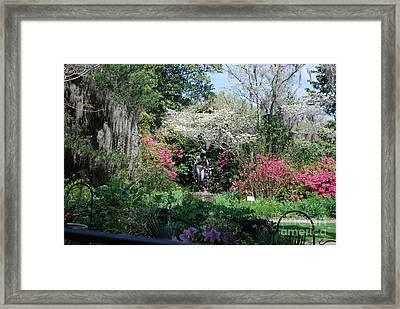 Brookgreen Gardens 2 Framed Print by Gordon Mooneyhan