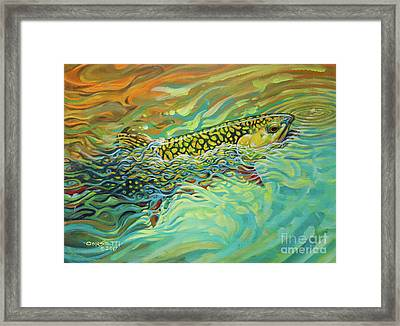 Brookie Flash Rework Framed Print