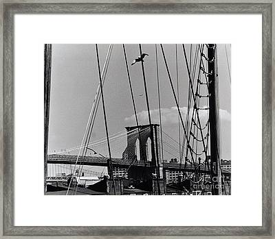 Brooklyn Bridge From South Street Seaport Framed Print by Anthony Butera